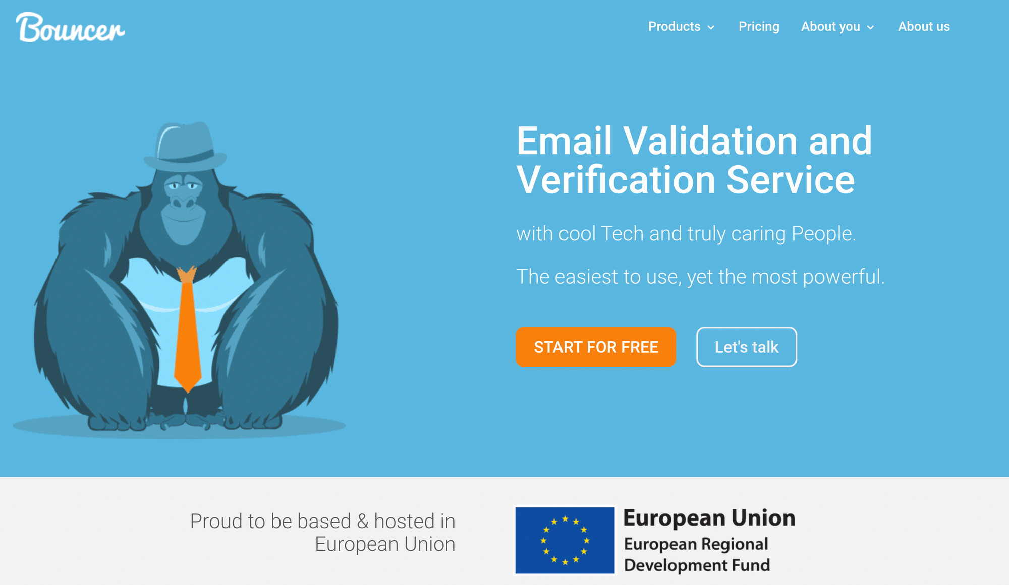 email verification tool